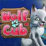 LIMITED OFFER! CasinoEuro is giving away 10 Wolf Cub Slot Free Spins No Deposit Required