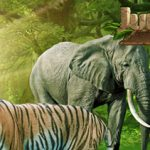 Mr Green Jungle Spirit Call of the Wild Prize Draw Tournament – €10,000 Prize Draw up for grabs!